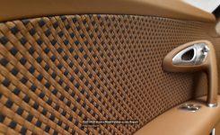 rembrandt-bugatti-veyron-grand-sport-vitesse-photos-modelpublisher-com-5